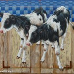 Two calfs on a board – 54 x 51 cm – sold