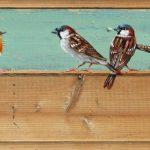 Drie mussen en een roodborst – 30 x 19 cm – €.165,-
