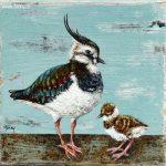 Kievit en jong 1 – 14 x 14 cm – verkocht